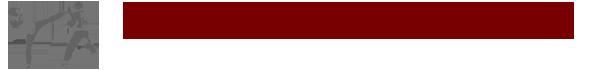 Internationaler Bodenseecup